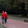 Trail in Prague Botanic Garden in Troja