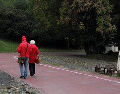 Stezka v Botanické zahradě hl. m. Prahy