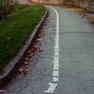 Trail in Charles University Botanical Garden in Albertov