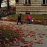 Stezka v Botanické zahradě Univerzity Karlovy
